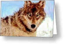 Mexican Wolf Painting Greeting Card
