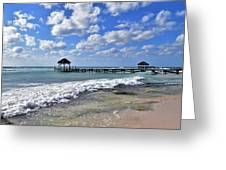 Mexico Beaches Greeting Card