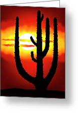 Mexico Sunset Greeting Card by Michal Boubin