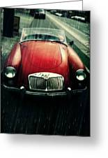 MG Greeting Card by Cathie Tyler