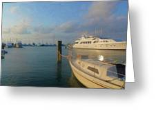 Miami Harbor Greeting Card