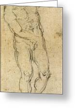 Michelangelo: Male Nude Greeting Card