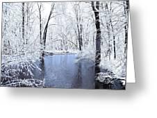 Michgan Winter 10 Greeting Card
