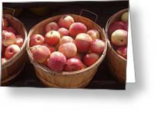 Michigan Apples Greeting Card