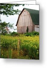 Michigan Barn Greeting Card by Michael Peychich