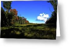 Michigan Fall Colors 12 Greeting Card
