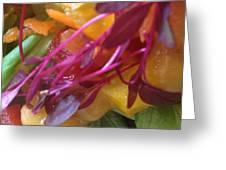 Micro Herbs Greeting Card