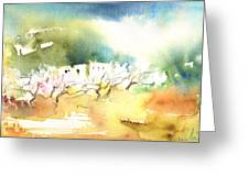 Midday 20 Greeting Card