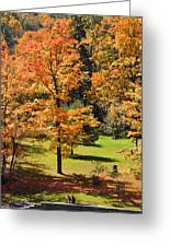 Middle Falls Viewpoint In Letchworth State Park Greeting Card