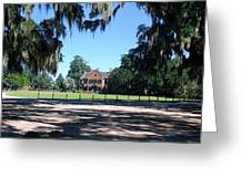 Middleton Plantation Charleston Sc Greeting Card