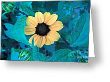 Midnight Bloom Greeting Card
