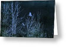 Midnight Flight Silhouette Blue Greeting Card