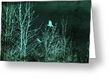 Midnight Flight Silhouette Teal Greeting Card