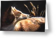 Midnight Fox Greeting Card
