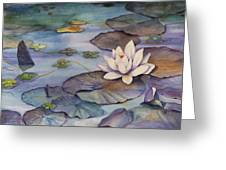 Midnight Lily Greeting Card