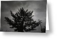 Midnight Storm Greeting Card