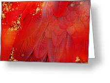 Midsummer Magik Fantasy Abstract Red Feathers, Gold Sparkles Greeting Card