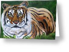 Mighty Bengal Greeting Card