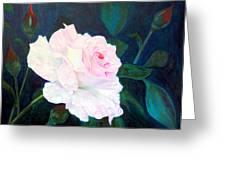 Midnight Rose Greeting Card