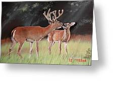 Mikeys Deer Greeting Card