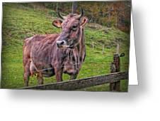 Milk Chocolate Basic Supplier Greeting Card