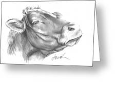 Milk Cow Greeting Card