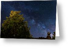 Milky Way Over The Forest At The Troodos Mountains In Cyprus. Greeting Card