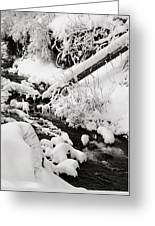 Mill Creek Canyon In Winter Greeting Card