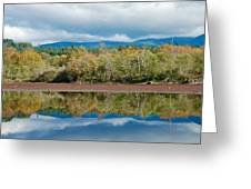 Mill Pond Illusion Greeting Card