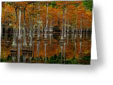 Mill Pond Reflections Greeting Card
