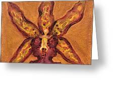 Miltassia Hybrid Greeting Card