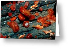 Mineral Greeting Card