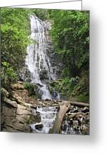 Mingo Falls In North Carolina Greeting Card