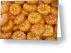 Mini Pumpkins Card Greeting Card