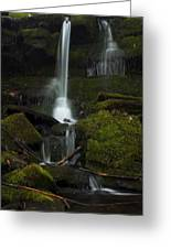 Mini Waterfall In The Forest Greeting Card