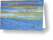Brazos Bend Wetland Abstract Greeting Card