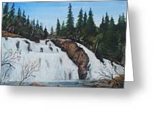 Mink Falls Greeting Card