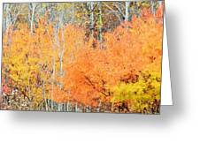 Minnesota Autumn 58 Greeting Card