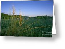 Minnesota Prairie Moon Rise Greeting Card