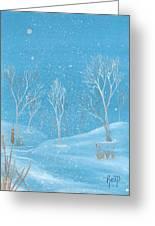 Minnesota Winter... No. Two Greeting Card by Robert Meszaros
