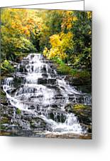 Minnihaha Falls In Autumn Greeting Card