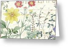 Mirabelle IIi Greeting Card
