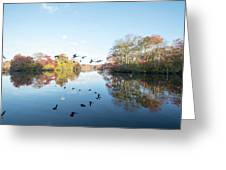 Mirrored Formation Greeting Card