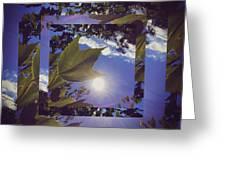 Mirrored Leaf Greeting Card
