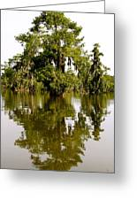 Mirrored Reflection Greeting Card
