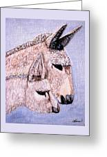 Mischievous Burros Greeting Card