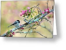 Miss Chickadee Greeting Card