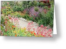 Mission Garden Greeting Card