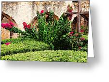 Mission San Jose' Flora Beauty Greeting Card