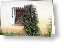Mission Window With Purple Flowers Greeting Card
